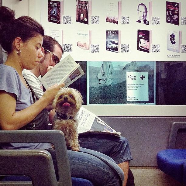Reading     by Joan Torrens igersbcn, passengers, tallerdefotos, ubiquography,