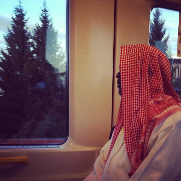 I ett land med många granar. by trulle_12 passenger, passengers,