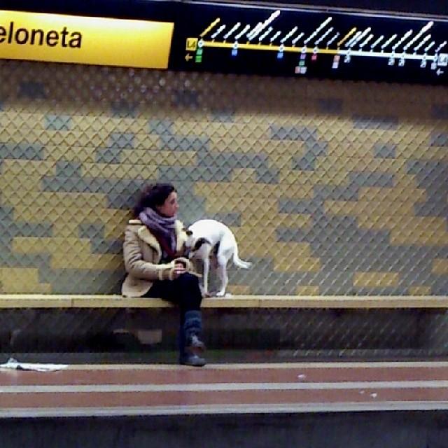 Pasajera y acompañante by miguel sánchez igersbcn, igerscatalunya, mafia_streetlove, passengers, streetphotography,